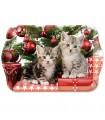 Plateau Chats Noël - Décoration de Noël