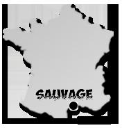 Boutique Sauvage Cap d'Agde